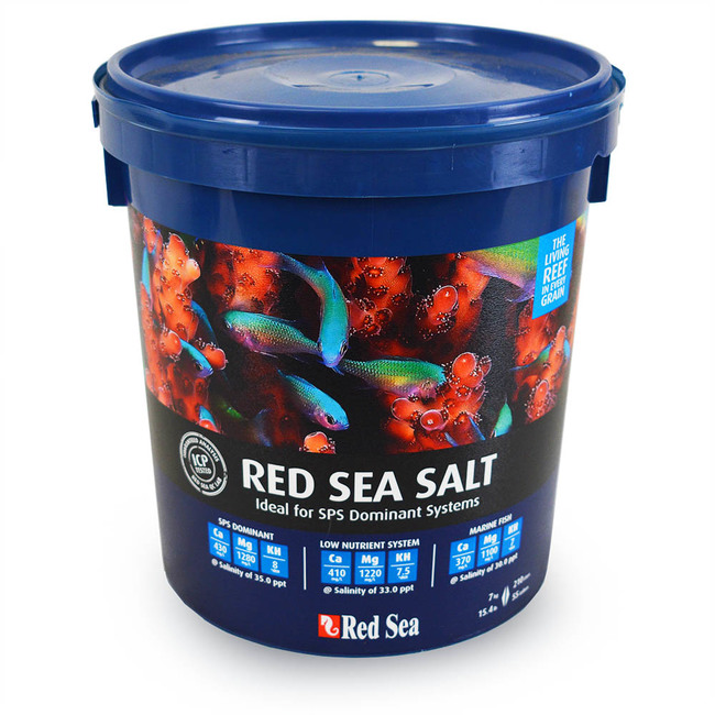 What is the most important part of saltwater? SALT!